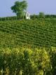 Vína z moravských Němčiček.jpg
